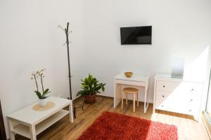 Televízia a/alebo spoločenská miestnosť v ubytovaní Villa Ľadoveň