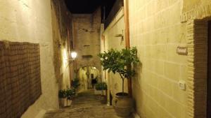 Facaden eller indgangen til Domusfrumenti