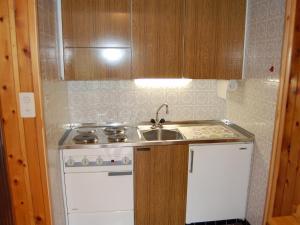 Küche/Küchenzeile in der Unterkunft Apartment Bouleaux E5