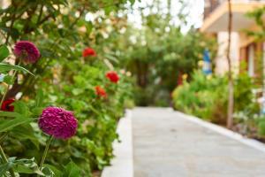 A garden outside Christinantzela Apartments