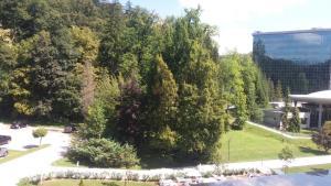 Vrt pred nastanitvijo Apartment Park
