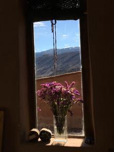 Una vista del jardín en Casa Buika o alrededores
