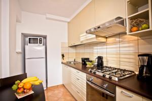 A kitchen or kitchenette at Lux Apartments Nicolae Balcescu