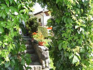 Сад в Ciasa Stoffie