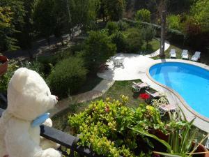O vedere a piscinei de la sau din apropiere de Club Topaz Apartments