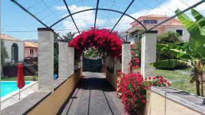 Un patio o zona al aire libre en Purple Studio
