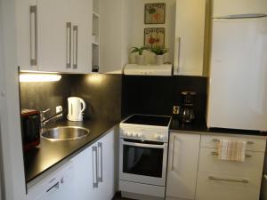 Ett kök eller pentry på Asuntovuokraus Poimu