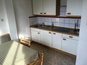 A kitchen or kitchenette at Fallerhof