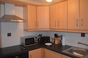 A kitchen or kitchenette at Blacklion Apartment