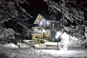 Cobalt cottage during the winter