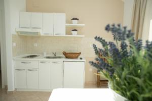 A kitchen or kitchenette at Apartments Rina