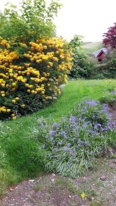 A garden outside Cuil Lodge