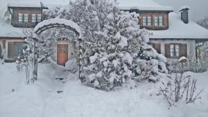 Schweizerblick im Winter