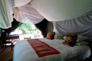 A bed or beds in a room at Croc Valley Camp