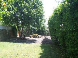 A garden outside Rua do Seixo No.22