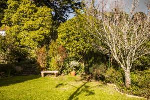 Jardín al aire libre en Hortensia Gardens