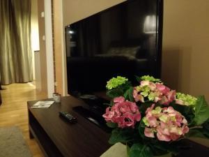 TV tai viihdekeskus majoituspaikassa Rotermanni Studio Apartment