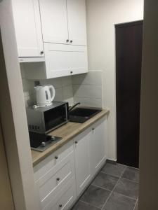 A kitchen or kitchenette at Apartman Saris