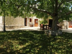 A garden outside Villa Archodiko