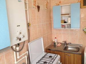 Кухня или мини-кухня в Ice Arena Apartment