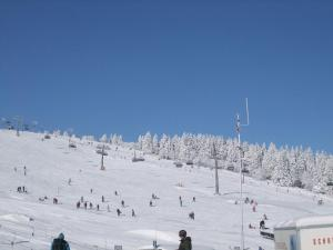 Ferienhaus Post during the winter