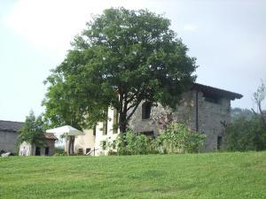 Vrt pred nastanitvijo Borgo Belvedere - Bilo