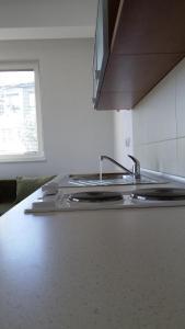 Kuhinja ili čajna kuhinja u objektu Boris & Matej Apartments