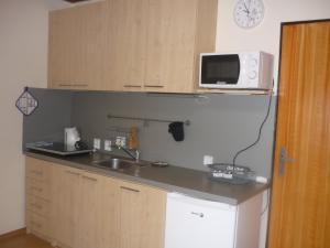 Kuchnia lub aneks kuchenny w obiekcie Ubytování nad sklípkem