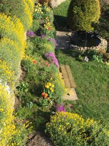 Ein Garten an der Unterkunft Haus Donaublick
