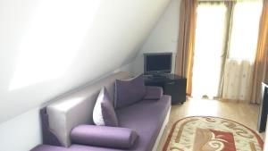 A television and/or entertainment center at Hotel Silvia Apart Sinaia