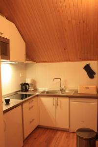 Kuhinja ili čajna kuhinja u objektu Apartment Pogled