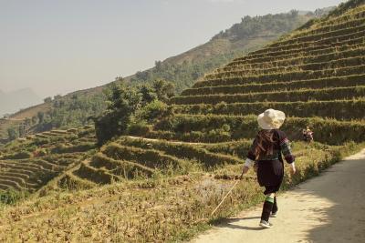 Hmong Sister House