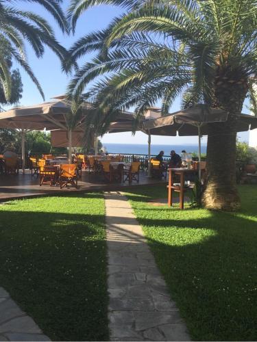 A garden outside Hotel Filoxenia
