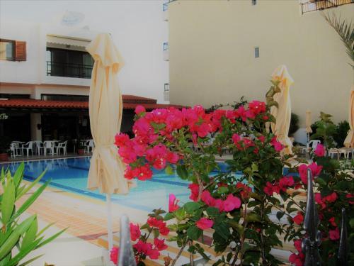 Der Swimmingpool an oder in der Nähe von Philippos Studios & Apartments