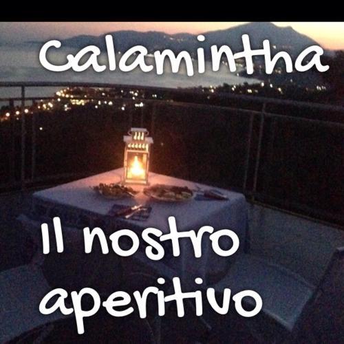Biorelais Calamintha
