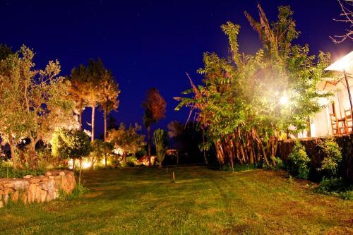 A garden outside Holiday Villa Casa Calma Ibiza