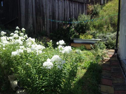 Ein Garten an der Unterkunft Häuschen im Fichtelgebirge