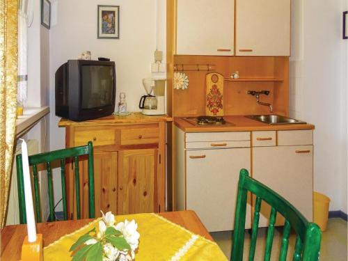 Een keuken of kitchenette bij One-Bedroom Apartment in Kranjska Gora