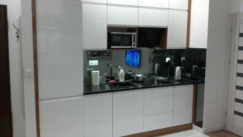 Virtuve vai virtuves aprīkojums naktsmītnē Apartament Sokołowska