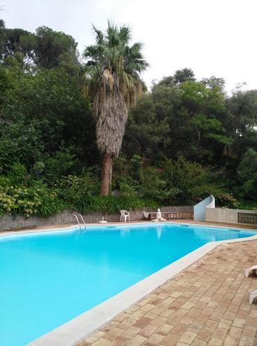 A piscina localizada em Albergaria do Lageado ou nos arredores