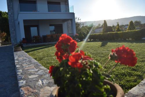 A garden outside Villa Aggemari