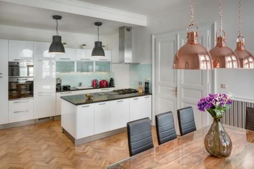 Η κουζίνα ή μικρή κουζίνα στο Veleslavinova Apartment