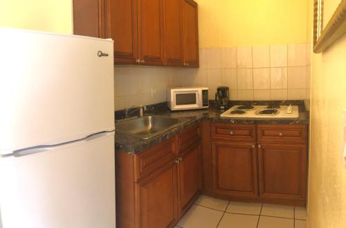 A kitchen or kitchenette at The Blue Wave