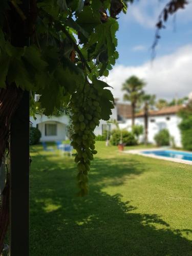 La pileta dentro o cerca de Hotel Portobelo Mendoza