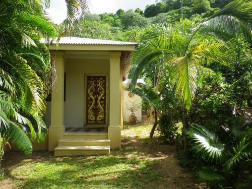 A garden outside Villa Papaya