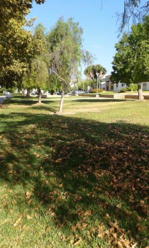 Jardín al aire libre en Apartamentos Tursol