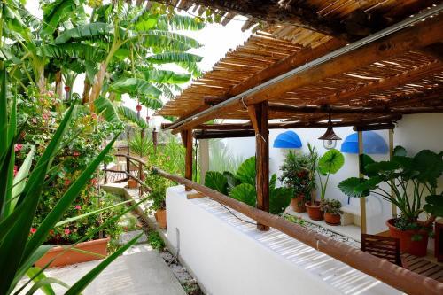 A balcony or terrace at Blue Dream - Amalfi Coast