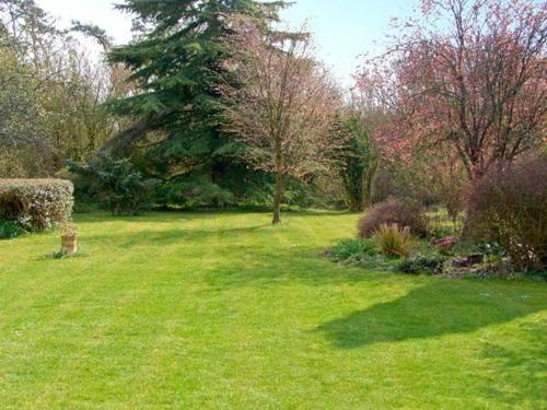 A garden outside The Cottage, Whitchurch