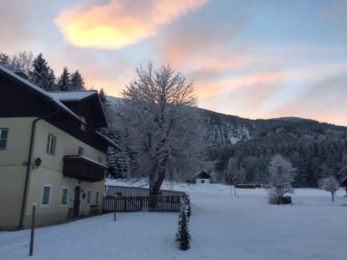 Ferienwohnung Ötscherwiese im Winter