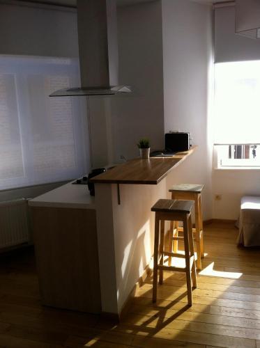 A kitchen or kitchenette at Apartment Art Déco Deuxième